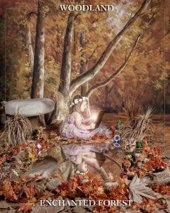 https://reminiscephotography.com.au/woodland-enchanted-forest/